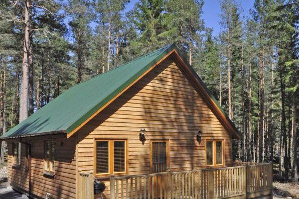 Forest lodges