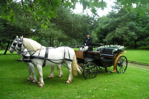 Weddings or Carriage Rides at Cossington Park