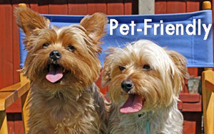Pet-friendly luxury self-catering accommodation