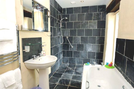 Accessible, mobility & wheelchair friendly bathroom in Wale Picture.